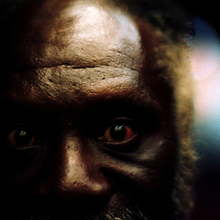 the nigga identities Mukoma wa ngugi: the riddle of identity means i can live in the us  to which  kofi annan promptly replied i am not a nigger, i am an african.